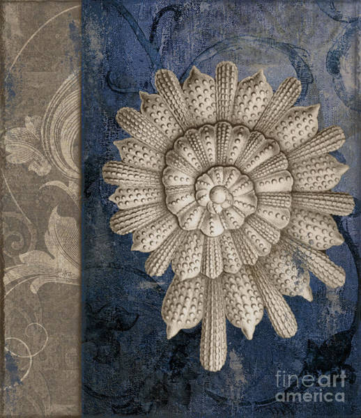 Wall Art - Painting - Shore Lines Beach Nautilus Shell by Mindy Sommers