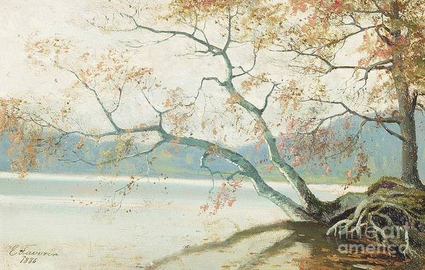 Painting - Shore Tree by Celestial Images