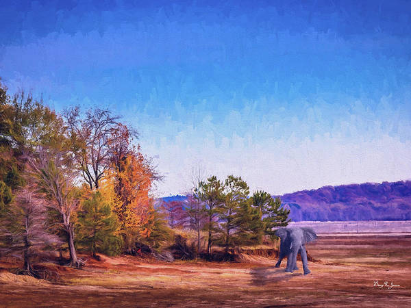 Digital Art - Shoreline Elephant by Barry Jones