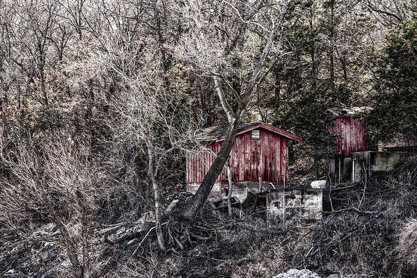 Photograph - Shoreline Sheds by Erich Grant