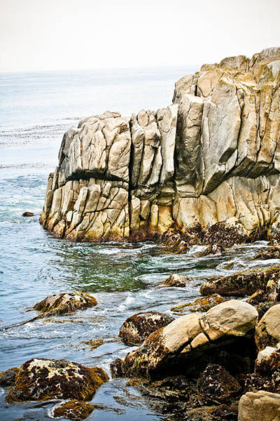 Photograph - Shores Of Pebble Beach by Marilyn Hunt