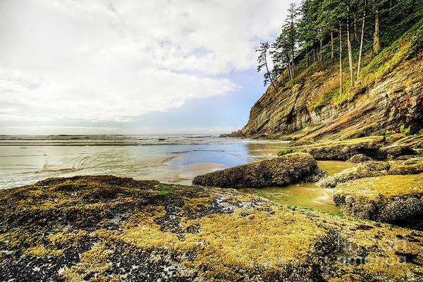 Photograph - Short Sands Beach, Oregon by Kay Brewer