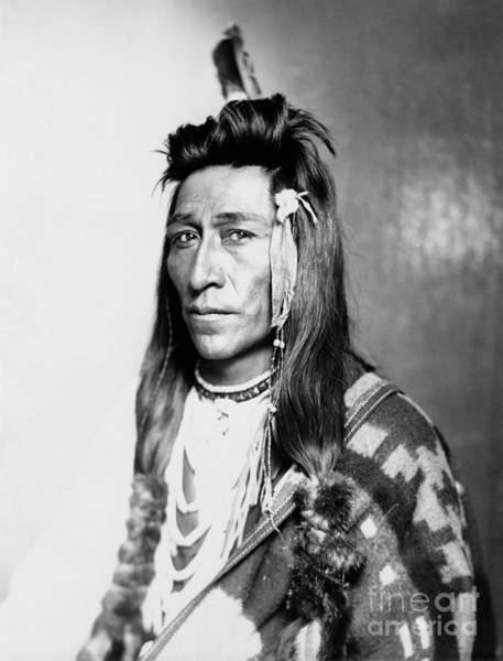 Photograph - Shoshone Native American by Granger