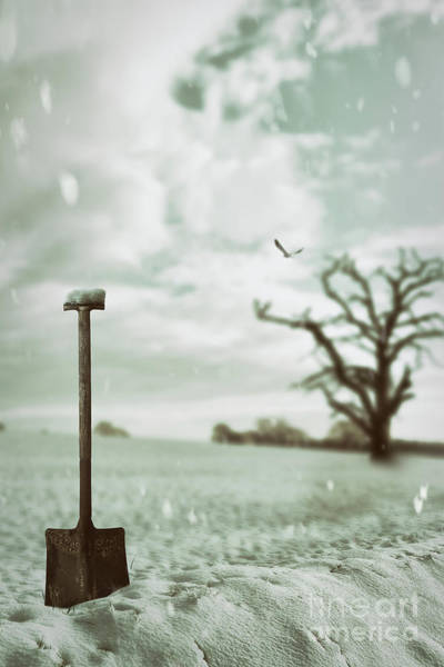 Wall Art - Photograph - Shovel In Snowy Landscape by Amanda Elwell