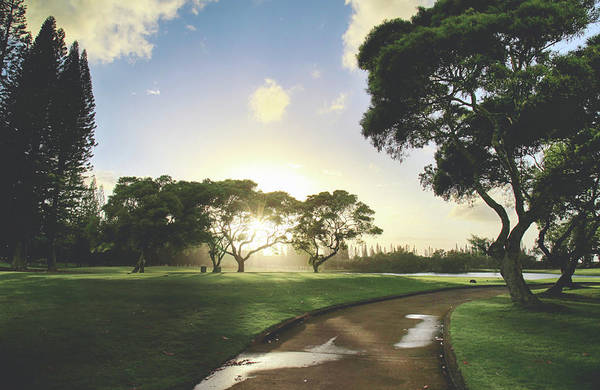 Golf Green Photograph - Show Me The Way by Laurie Search
