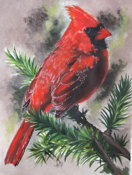Wall Art - Painting - Show-off by Barbara Keith
