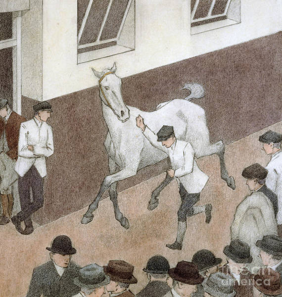 Wall Art - Painting - Showing The Paces by Robert Polhill Bevan