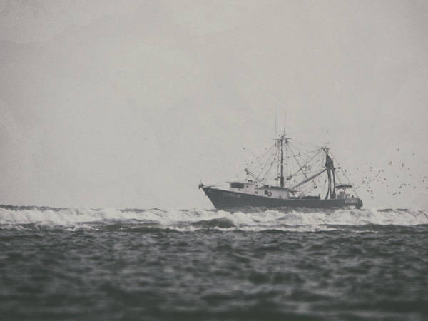 Photograph - Shrimp Boat Catherine by Charles McKelroy