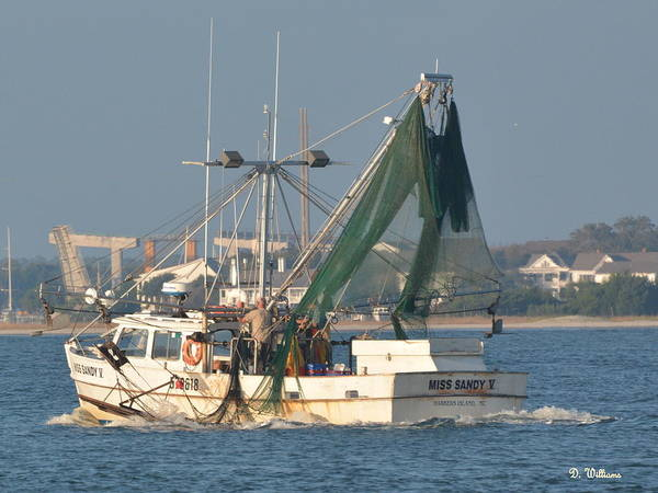 Photograph - Shrimp Boat Near Beaufort by Dan Williams