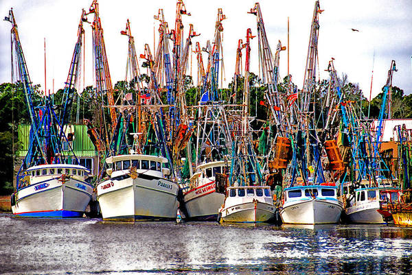 Jeremy Photograph - Shrimp Fleet by Joe Benton