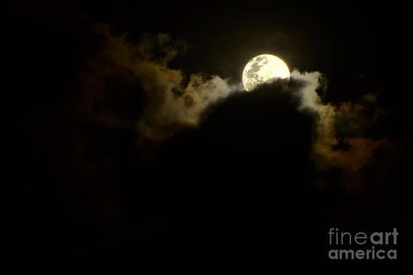 Wall Art - Photograph - Shy Moon Rising By Kaye Menner by Kaye Menner