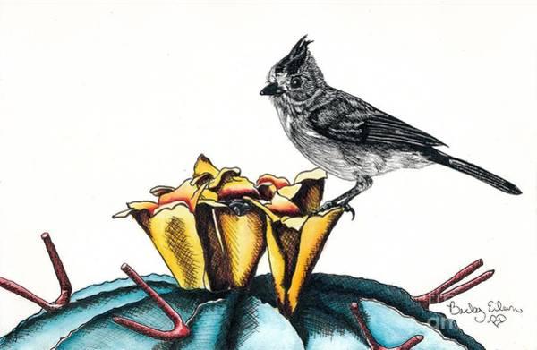 Titmouse Drawing - Shy Titmouse by Becky Eileen Eller