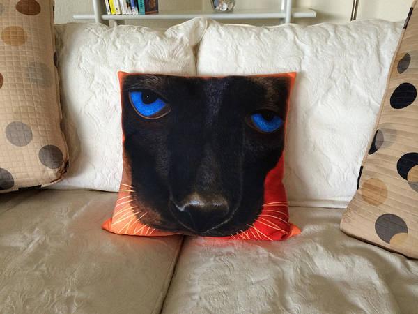 Painting - Siamese Pillow by Karen Zuk Rosenblatt