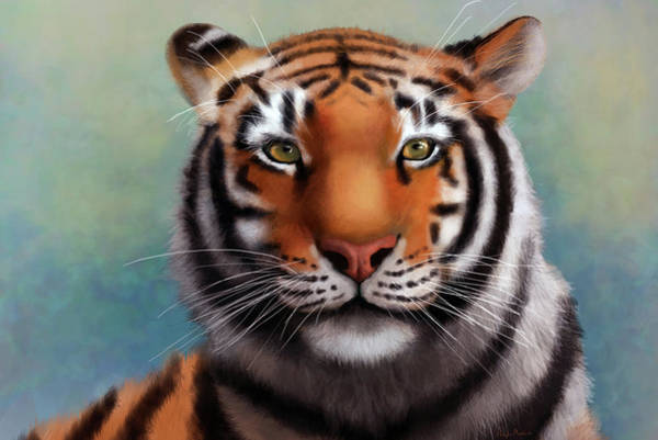 Digital Art -  Siberian Tiger by Angela Murdock