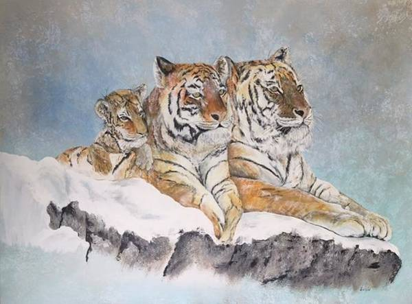 Wall Art - Painting - Siberian Tiger Family by Wm Garcia