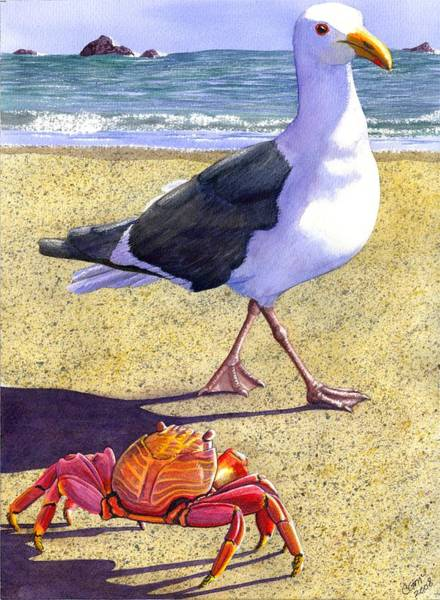 Seagull Painting - Side Stepping by Catherine G McElroy