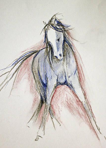 Warmbloods Drawing - Sidestep by Jennifer Fosgate