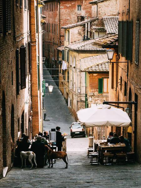 Photograph - Siena, Tuscany, Italy by Alexandre Rotenberg