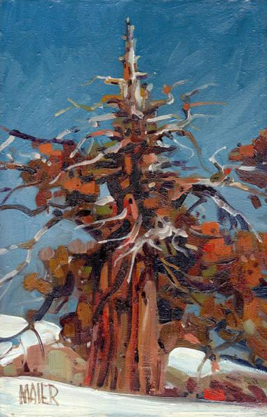 Juniper Wall Art - Painting - Sierra Juniper by Donald Maier