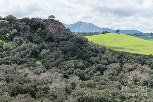 Art Print featuring the photograph Sierra Ronda, Andalucia Spain 2 by Perry Rodriguez