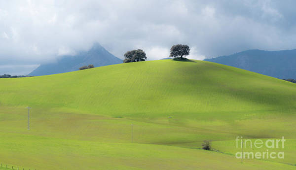 Art Print featuring the photograph Sierra Ronda, Andalucia Spain 3 by Perry Rodriguez