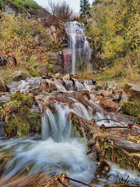 Photograph - Sierra Waterfall by Martin Gollery