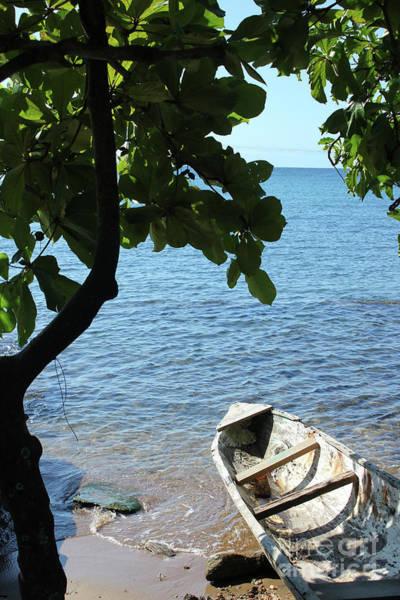 Photograph - Siesta In Honduras by Wilko Van de Kamp