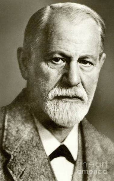 Pioneer School Photograph - Sigmund Freud The Founder Of Psychoanalysis by English School