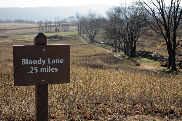 Maryland Wall Art - Photograph - Sign For Bloody Lane At Antietam by William Kuta