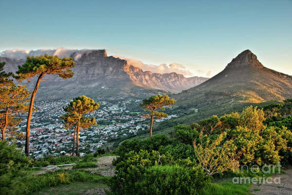 Table Mountain Wall Art - Photograph - Signal Hill In Cape Town by Delphimages Photo Creations