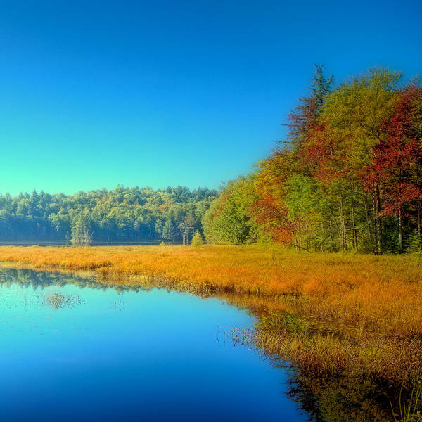 Photograph - Signs Of Autumn On Cary Lake by David Patterson