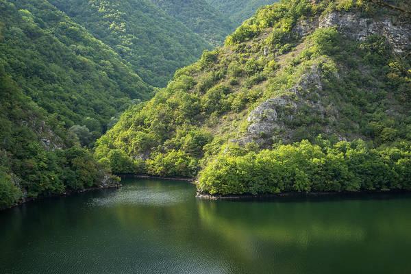 Photograph - Silence And Solitude - Mountain Lake In Calming Greens by Georgia Mizuleva