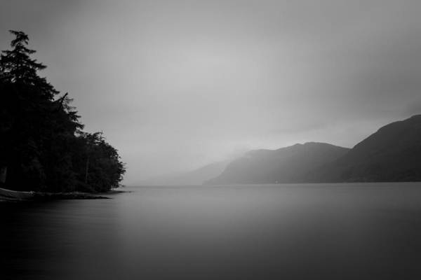 Greyscale Photograph - Silence by Chris Dale