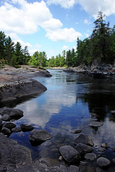 Sturgeon River Photograph - Silence by Debbie Oppermann