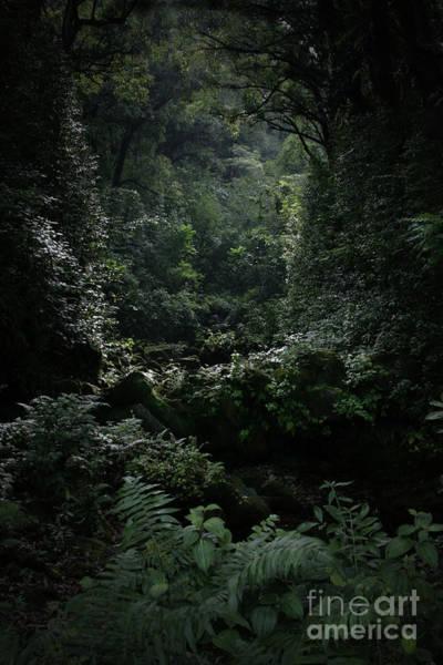Photograph - Silence Is Round Me   - Mokulehua by Sharon Mau