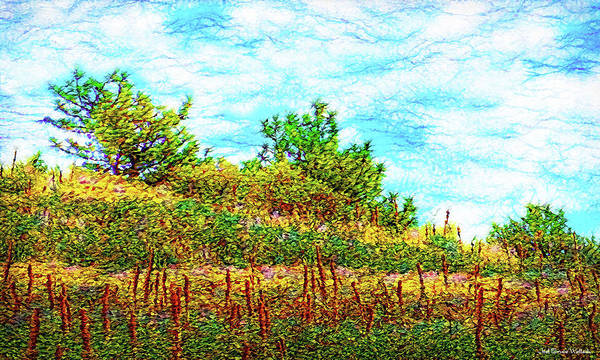 Digital Art - Silence Of A Wild Meadow by Joel Bruce Wallach