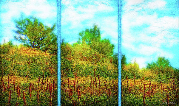 Digital Art - Silence Of A Wild Meadow - Triptych by Joel Bruce Wallach