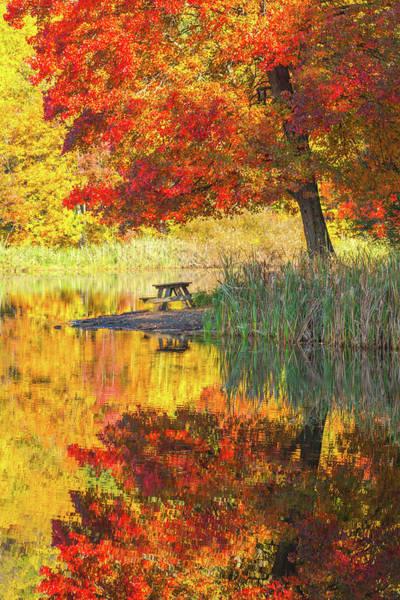 Wall Art - Photograph - Silence Of Autumn by Karol Livote