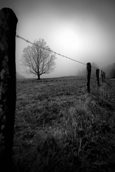 Photograph - Silence by Renee Sullivan