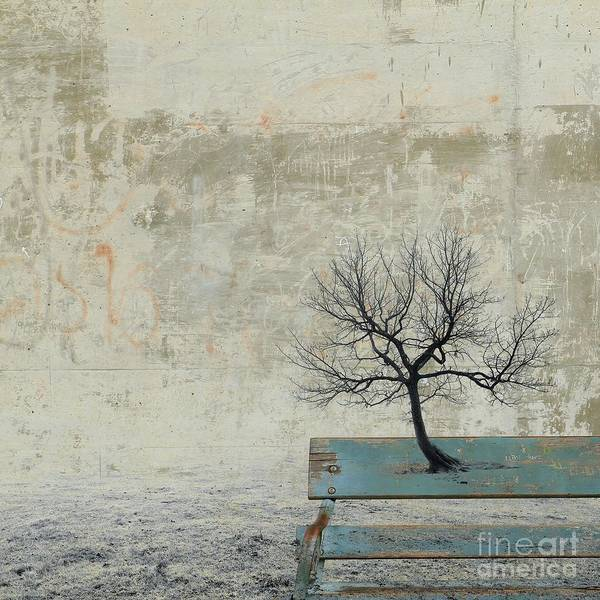 Surrealistic Photograph - Silence To Chaos - 30a by Variance Collections