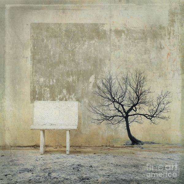 Surrealistic Photograph - Silence To Chaos - 32b by Variance Collections