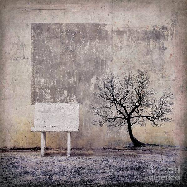 Surrealistic Photograph - Silence To Chaos - 32e3b by Variance Collections