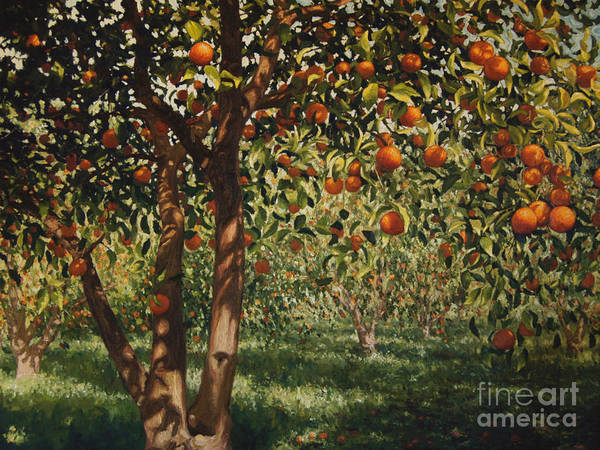 Citrus Painting - Silence Under The Oranges II by Angus Hampel