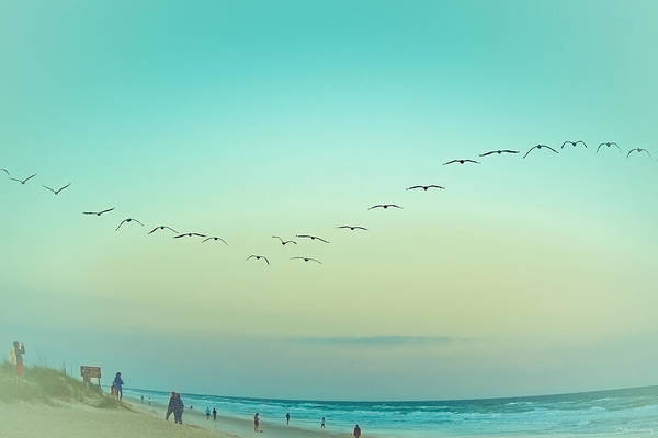 Photograph - Silence With Sound- The Beach by Janal Koenig