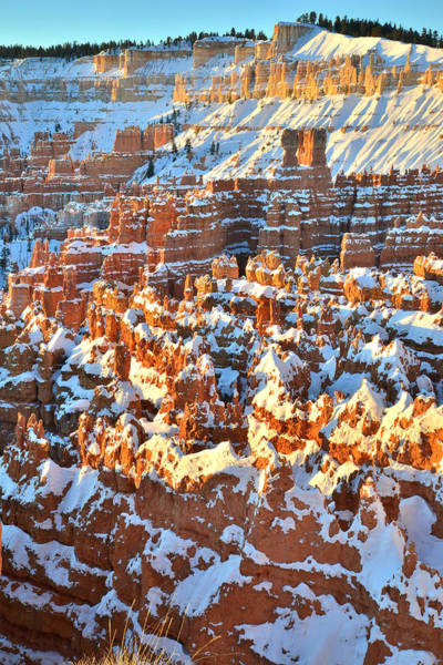 Photograph - Silent City Snow by Ray Mathis