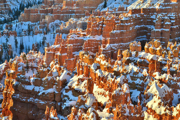 Photograph - Silent City Snowy Hoodoos by Ray Mathis