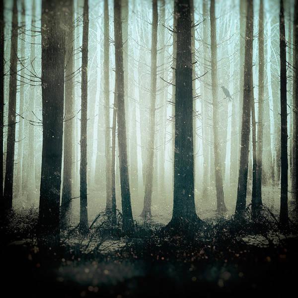 Mood Digital Art - Silent Dream by Katherine Smit