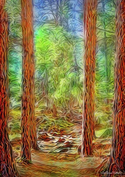 Digital Art - Silent Forest Path by Joel Bruce Wallach