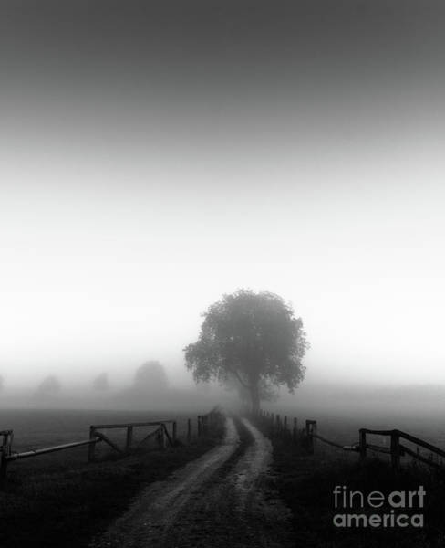 Fence Mixed Media -  Silent Morning  by Franziskus Pfleghart