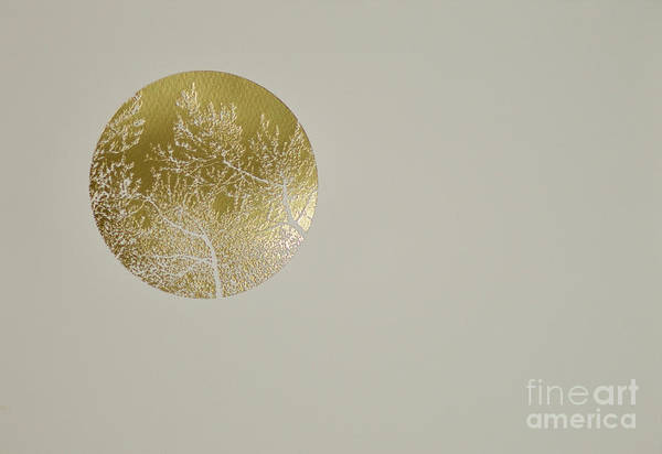 Wall Art - Painting - Silent Olive by Angus Hampel